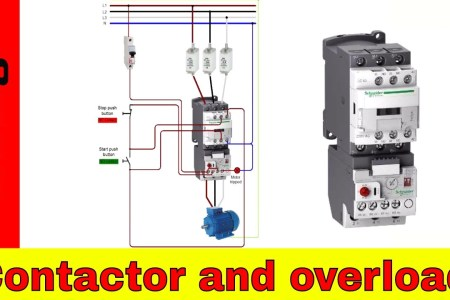 Wiring diagram of a single phase fresh dol starter single phase with wiring diagram electrical engineering basic control circuits wiring diagram for magnetic motor starter siemens dol starter wiring diagram refrence phase asfbconference2016 Images