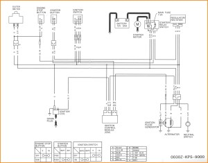 Pit Bike Wiring Diagram 125cc | hobbiesxstyle