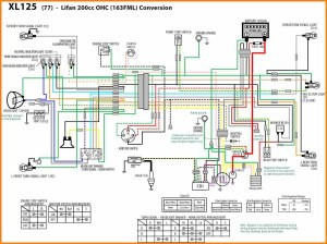125cc Pit Bike Wiring Diagram For | Wiring Library