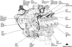 F150 5 4l Engine Wiring Diagram | Better Wiring Diagram Online