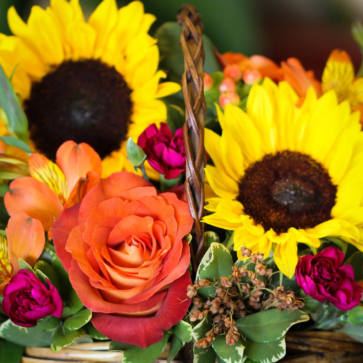 Sending School Flowers { Anoka Area Delivery }