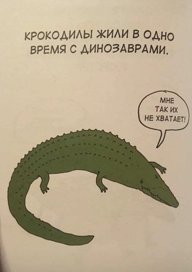 Грустные факты о животных, от которых становится смешно (20 фото)