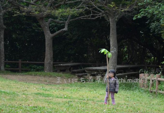 撤収のあいだ、自然と遊んでます