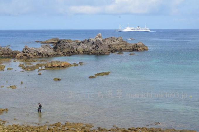 大浦と大型客船