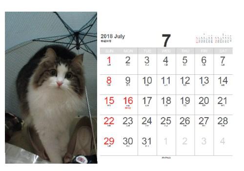 猫 カレンダー