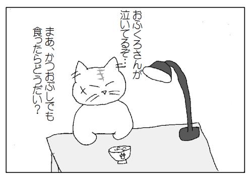猫に取り調べ