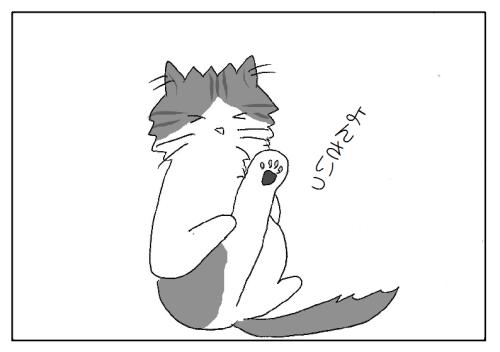 猫の肉球・後ろ足は4本
