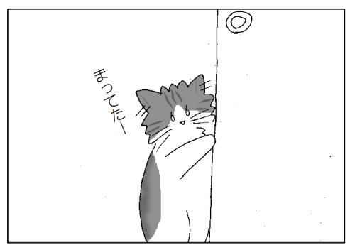 ストーキング猫