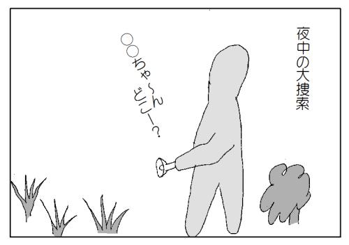 猫 リード 散歩