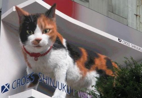 新宿 3D 巨大猫 動く看板