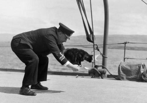 船に乗った猫 航海のお守り Peebles ピーブルズ