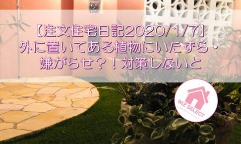 【注文住宅日記2020/1/7】外に置いてある植物にいたずら・嫌がらせ?!対策しないと
