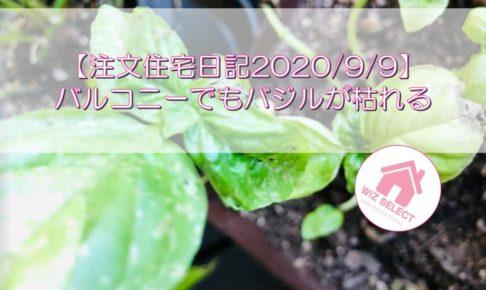 【注文住宅日記2020/9/9】バルコニーでもバジルが枯れる