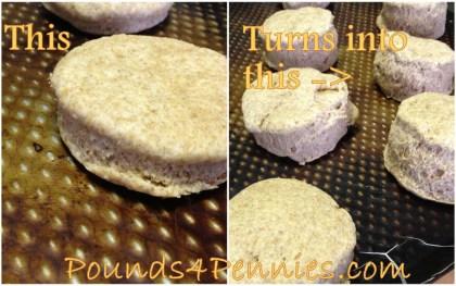 Homemade biscuits recipe biscuits