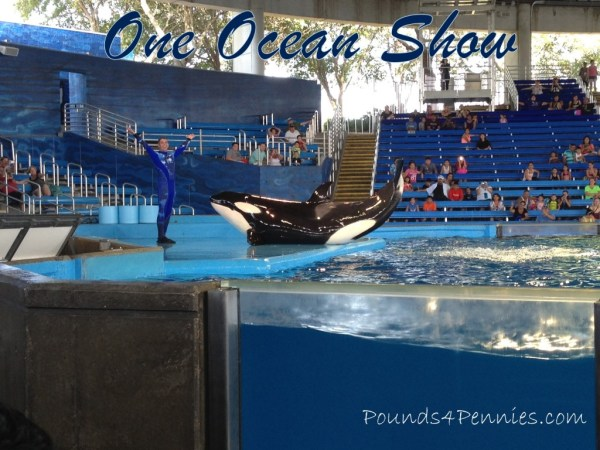 One Ocean Shamu Show
