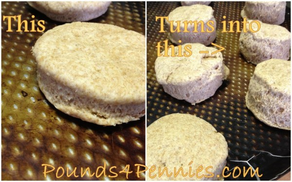 Homemade biscuits recipe biscuits