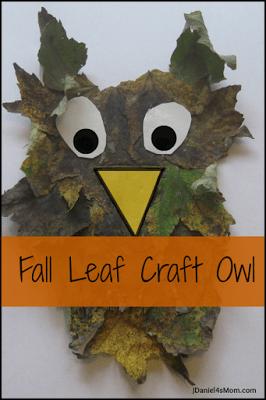 Falls Leaf Craft Owl
