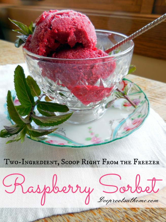 Summertime Raspberry Sorbet