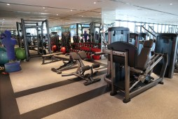 Gym: Weights area