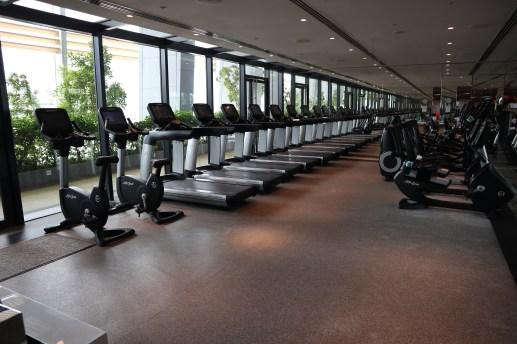Gym: Cardio area