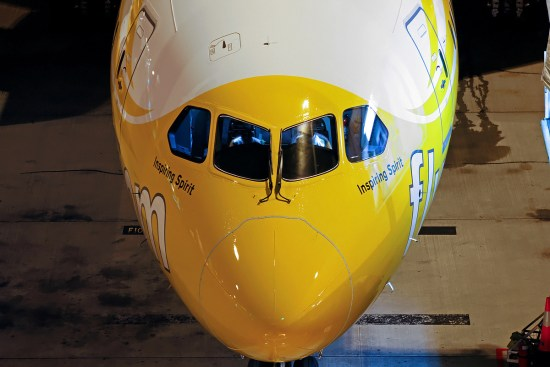Scoot 787 (Darren Koch)