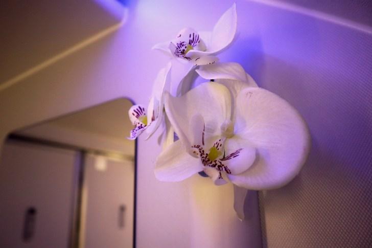 Toilet 8.jpg