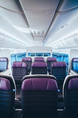 United Premium Plus 787 (United Airlines).jpg
