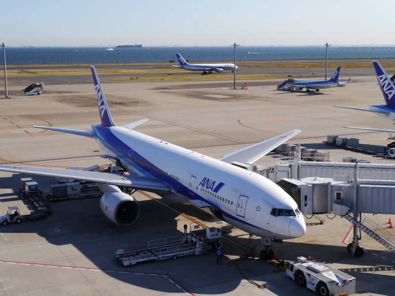 ANA Planes at Haneda.jpg