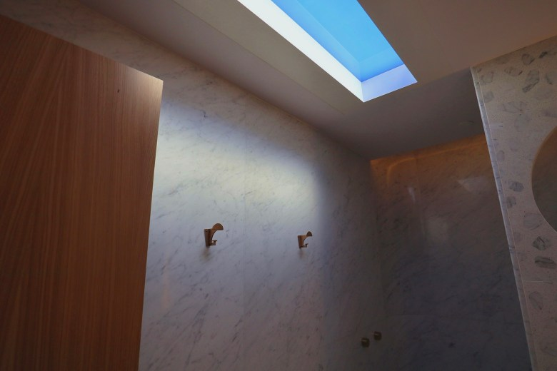 Shower Skylight