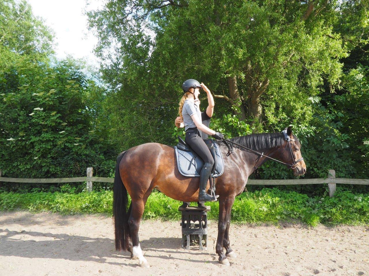 Reitunterricht direkt am Menschen und Pferd