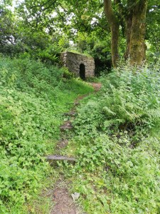 In the middle distance is a rectangular structure about two metres in height with a curved, arched doorway in the centre. It sits at the top of a gentle slope, roughly stepped with occasional planks of wood. On either side of this rough, narrow path is green untamed, undergrowth. In te top right of the picture is a sycamore tree.