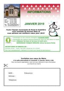 thumbnail of Bulletin Janvier 2019
