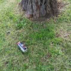rubbish on nature strip