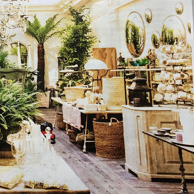 Today's You magazine featuring another favorite stockist @petershamnurseries
