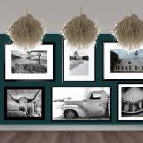 Gallery wall w/tumbleweed