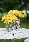 27 Fleurs jaune. jpg