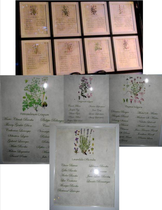 Tableau d'invités thème fines herbes