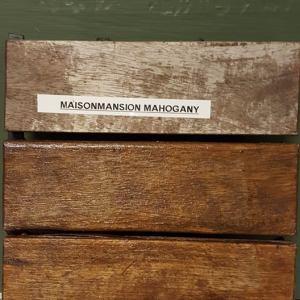 Woodstain  Mahogany 100 ml