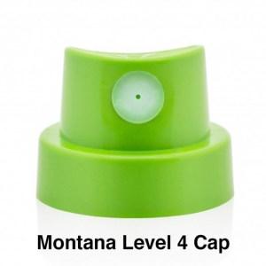 Montana Level 4 Cap