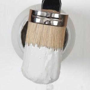 Tester Fusion Paint  Pebble