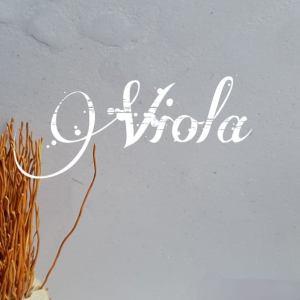 Viola Beton Ciré wand