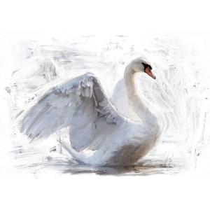 Reverse White Swan decoupage