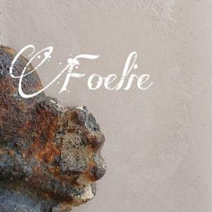 Foelie Beton Ciré