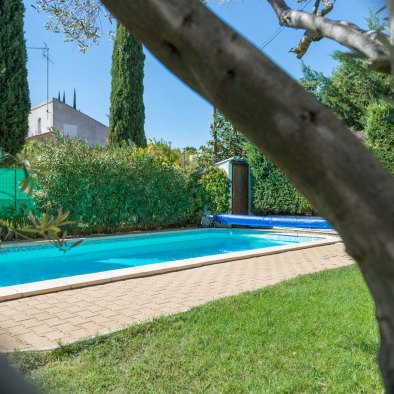 Side view of the Swimming pool and olive tree in holiday rental guest house aix en provence maison saint jerome