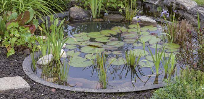 amenager un bassin exterieur