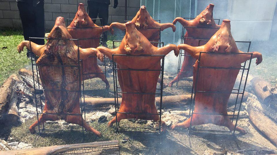 Dia do Porco