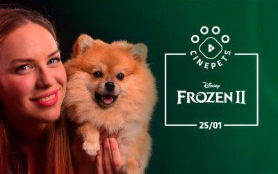 Primeira sessão de cinema pet friendly de 2020 acontece neste sábado em Curitiba