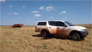coleta de trigo camioneta