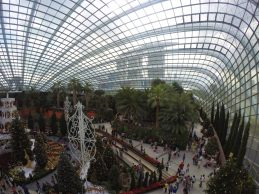 Gardens By The Bay, Flower Dome