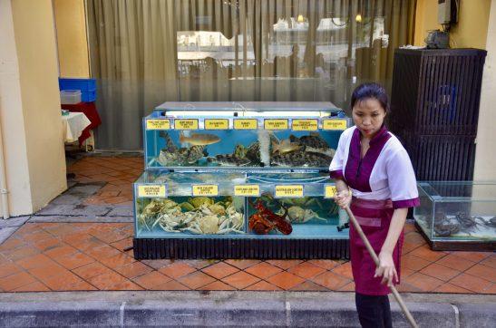 Peixes frescos, Boat Quay